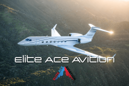 palmetto palm marketing portfolio elite ace aviation